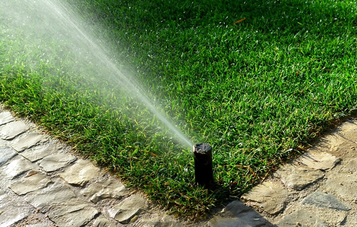 Sprinkler system watering a large lawn