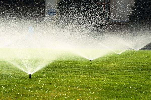 Multiple sprinklers working well, after Sprinkler Repair