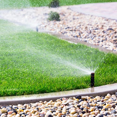 Sprinkler-Services